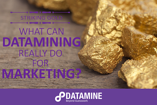 What can datamining really do for marketing?