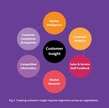 Customer Insight circle visualisation