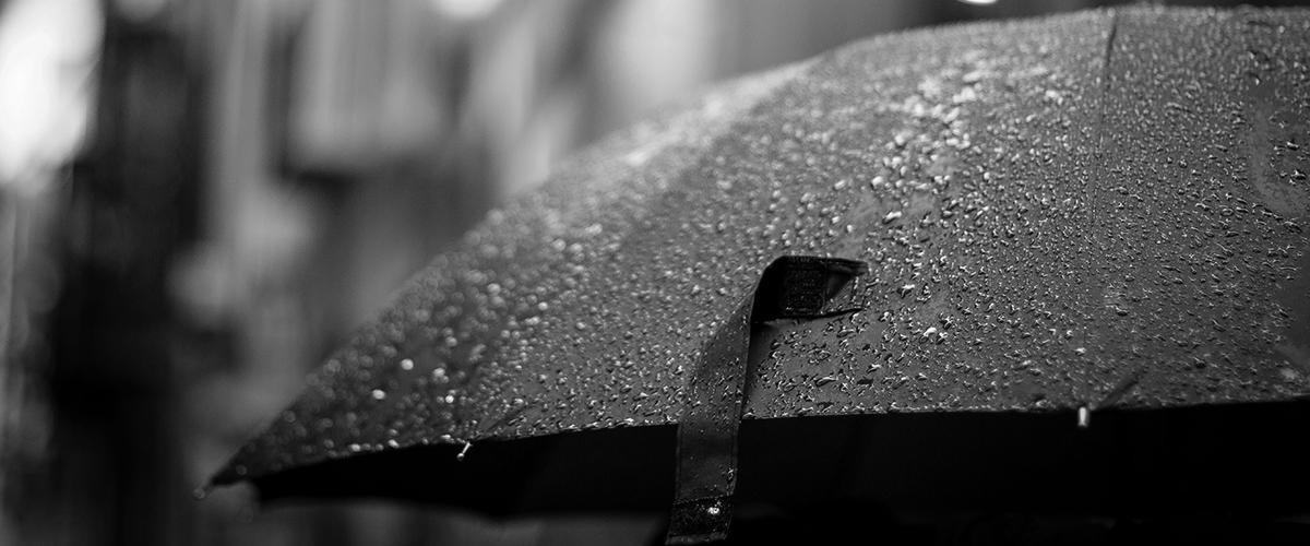forecasting higher profits umbrella in the rain
