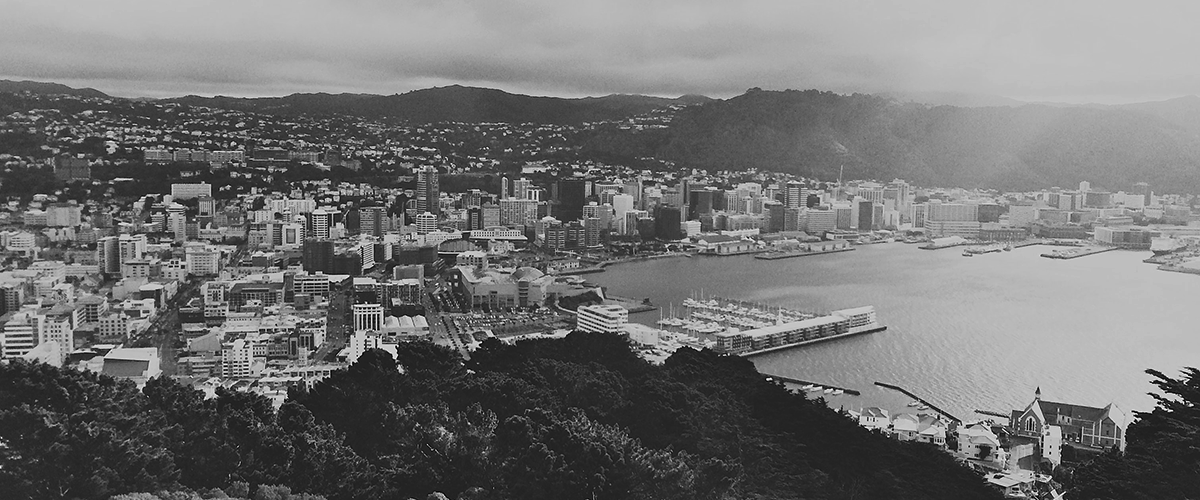 top wellington 2018 view from mount victoria harbour