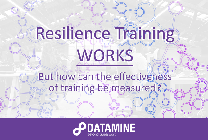 Resilience training cover image new style